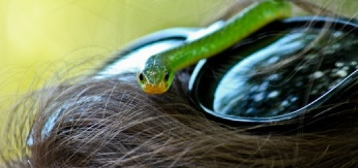 ciekawe okulary