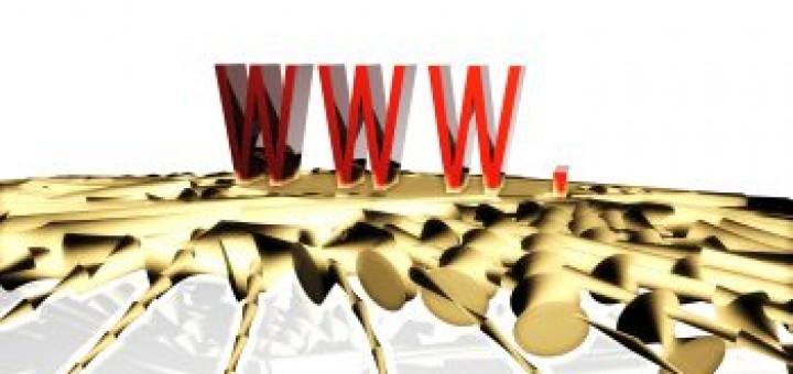 ochrona sieci www
