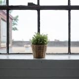 okna kielce
